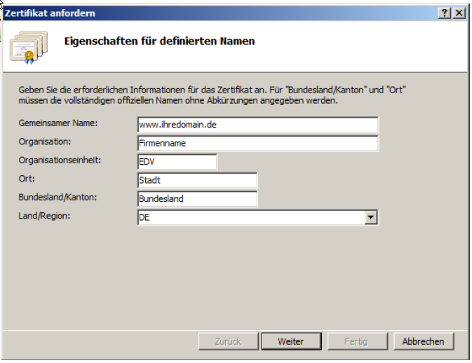 Füllen Sie alle benötigten Felder entsprechend Ihres Unternehmens aus. Der gemeinsame Name ist der FQDN des Servers. Dieser Domainname muss auf die IP des Servers auflösen: